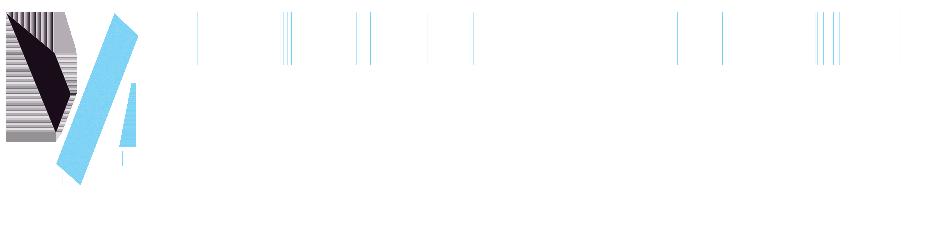 Vinconnexion